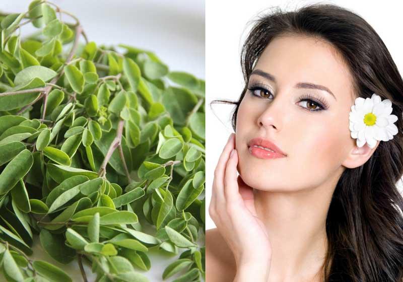 Manfaat daun kelor untuk kesehatan dan kecantikan