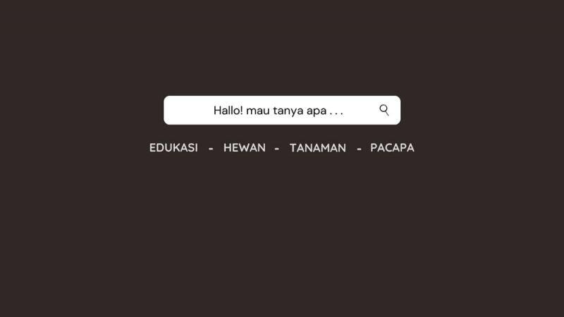 kontak alihamdan.id