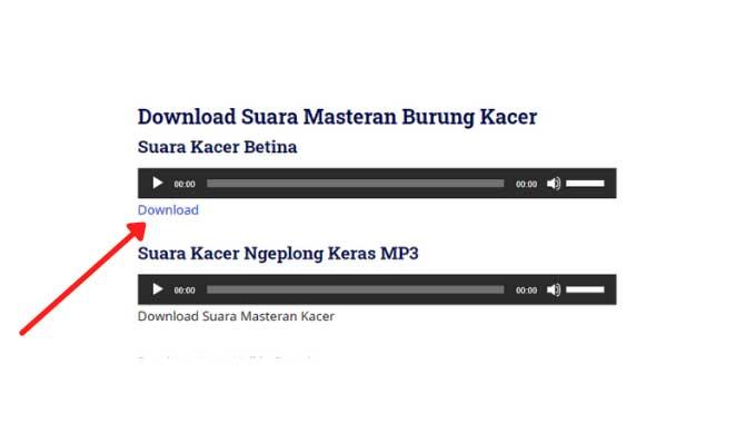 download suara masteran kacer