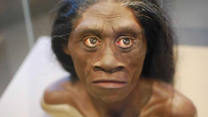Jenis manusia purba Homo Florensis
