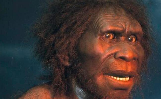 Jenis manusia purba Sinanthropus Pekinensis