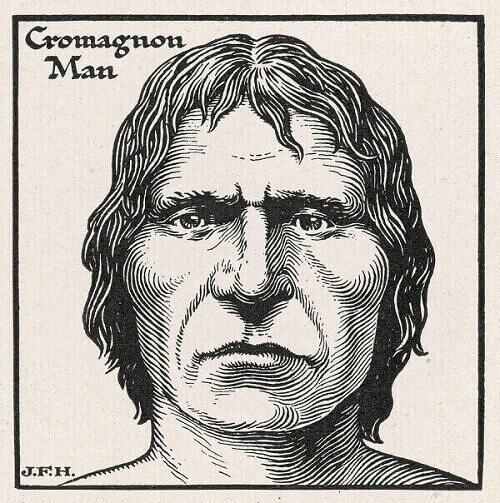 Jenis manusia purba Homo Cro Magnon