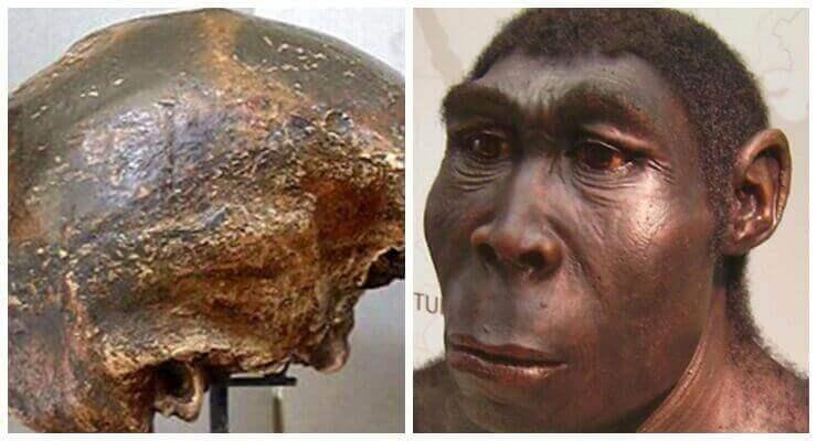 Jenis manusia purba Pithecanthropus Soloensis